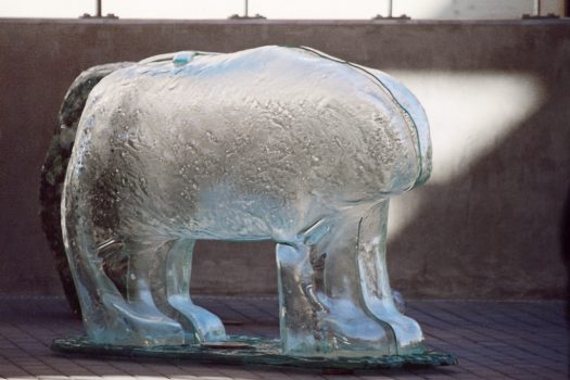 Glass bear sculpture by Urbanowicz